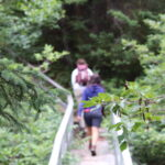 A small group of hikers crossing a bridge in a forest