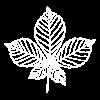 Icon of a chestnut leaf